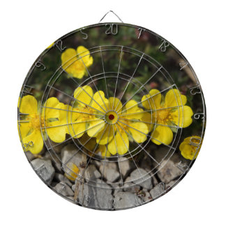 Flowers of a spring cinquefoil dartboards