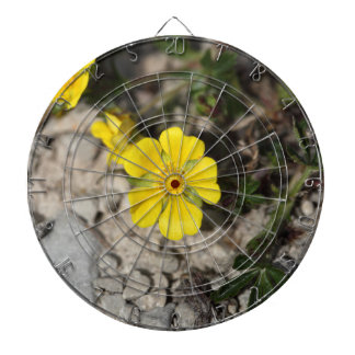 Flowers of a spring cinquefoil or spotted cinquefo dart board