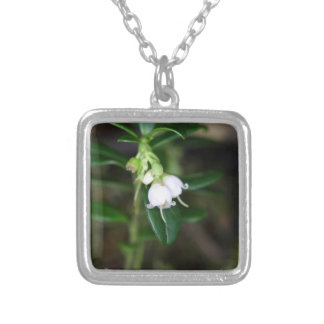 Flowers of a wild lingonberry (Vaccinium vitis-ide Silver Plated Necklace