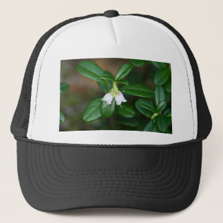 Flowers of a wild lingonberry (Vaccinium vitis-ide Trucker Hat