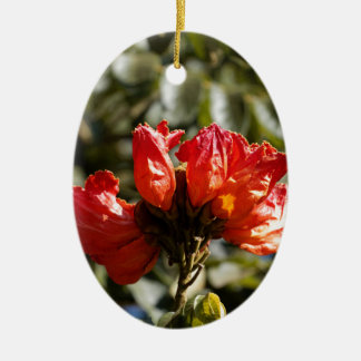 Flowers of an African tuliptree Ceramic Ornament