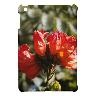 Flowers of an African tuliptree iPad Mini Cover