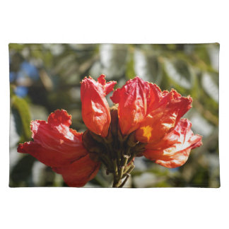 Flowers of an African tuliptree Placemat