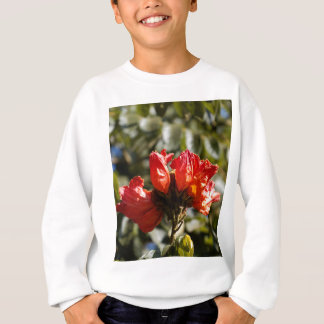 Flowers of an African tuliptree Sweatshirt