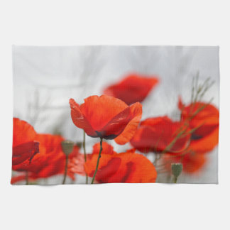 Flowers of common poppy in a field. kitchen towels