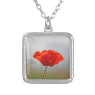 Flowers of common poppy in a field. silver plated necklace