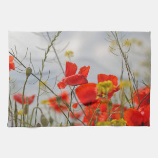 Flowers of common poppy in a field. towel
