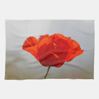 Flowers of common poppy in a field. towels