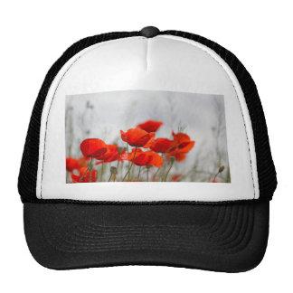 Flowers of common poppy in a field. trucker hat