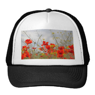 Flowers of common poppy in a field. trucker hat