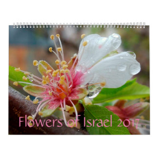 Flowers of Israel: 2017 Calendar