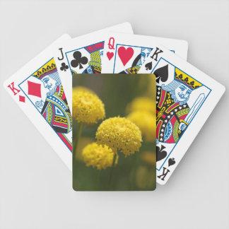 Flowers of Santolina rosmarinifolia Poker Deck