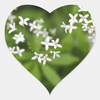 Flowers of sweetscented bedstraw (Galium odoratum) Heart Sticker