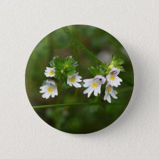 Flowers of the Eyebright Euphrasia rostkoviana 2 Inch Round Button
