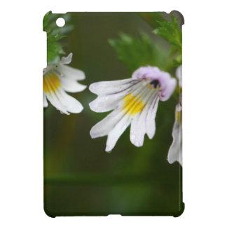 Flowers of the Eyebright Euphrasia rostkoviana iPad Mini Cases