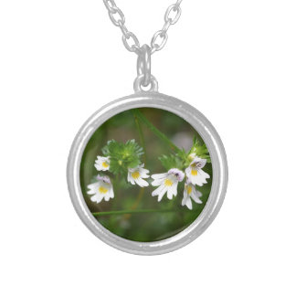 Flowers of the Eyebright Euphrasia rostkoviana Silver Plated Necklace