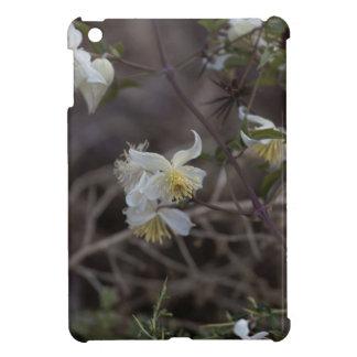 Flowers of Traveller Joy (Clematis brachiata) Case For The iPad Mini