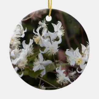 Flowers of Traveller Joy (Clematis brachiata) Ceramic Ornament
