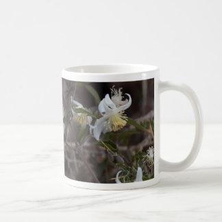 Flowers of Traveller Joy (Clematis brachiata) Coffee Mug