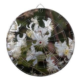 Flowers of Traveller Joy (Clematis brachiata) Dartboard