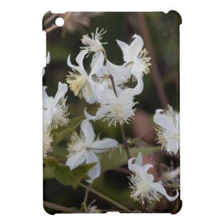 Flowers of Traveller Joy (Clematis brachiata) iPad Mini Cover