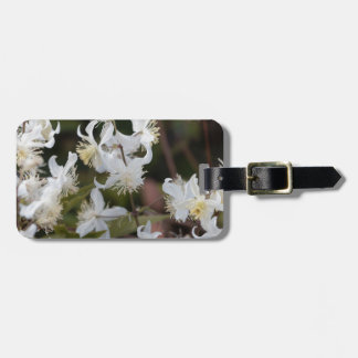 Flowers of Traveller Joy (Clematis brachiata) Luggage Tag