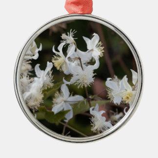Flowers of Traveller Joy (Clematis brachiata) Metal Ornament