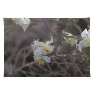 Flowers of Traveller Joy (Clematis brachiata) Placemat