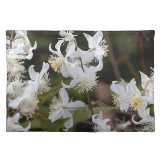 Flowers of Traveller Joy (Clematis brachiata) Placemat