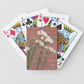 Flowers on Brick Bicycle Playing Cards