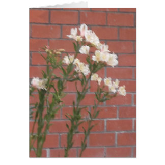 Flowers on Brick Card