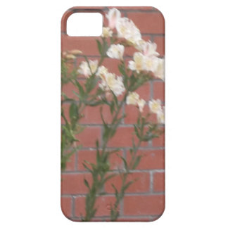 Flowers on Brick iPhone 5 Covers