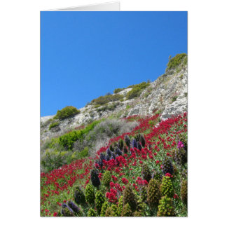 Flowers on Hill Greeting Card