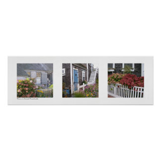 Flowers on Nantucket, Massachusetts Triptych Poster