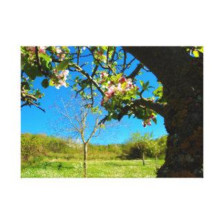 Flowers - panoramas canvas print