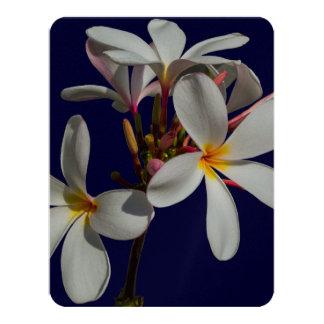 "Flowers Peace Blessing Love Park Vines Destiny 4.25"" X 5.5"" Invitation Card"