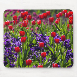 Flowers poppies mouse pad
