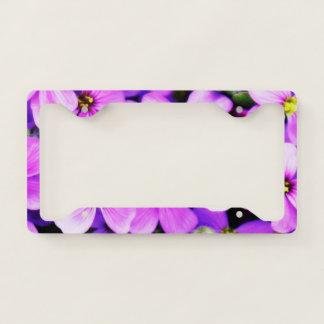 Flowers Purple Blütenmeer Purple Flower Flower License Plate Frame