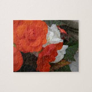 Flowers Puzzles