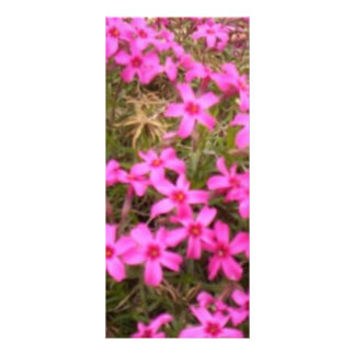 FLOWERS RACK CARD