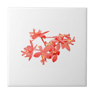 Flowers Salmon Tinted Ground Orchid Tile