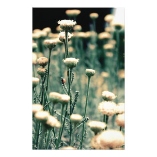 Flowerseeds Stationery Paper
