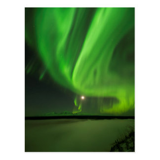 Flowing Aurora Postcard