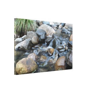 Flowing Creek Over Rocks Queensland Australia Canvas Print