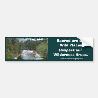 FLOWING RIVER LANDSCAPE BUMPER STICKER