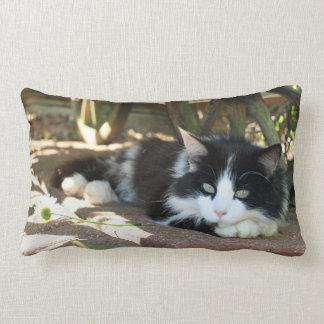 Fluffy Black and White Cat Lumbar Pillow