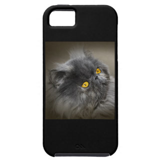 Fluffy Black Cat with Orange Eyes Case For The iPhone 5