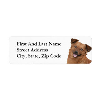 Fluffy Brown Puppy Photograph Return Address Label