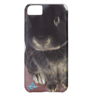 Fluffy Bunny iPhone 5C Cover
