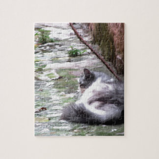 Fluffy cat sleeping crouch on the floor jigsaw puzzle